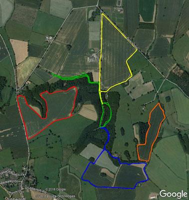 Run Rabbit Trail 5ks