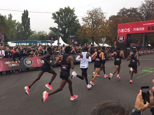 Kipchoge Marathon
